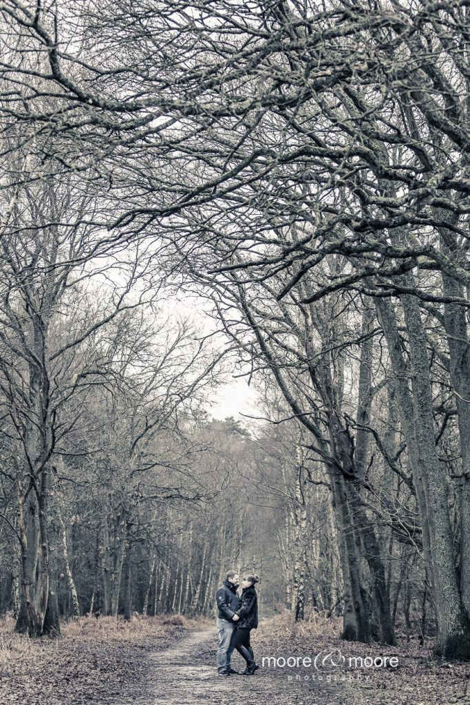 engagement photography down in the woods, Wedding Photographer Hampshire